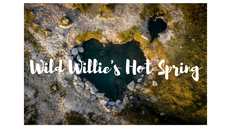 USA – Wild Willie's Hot Spring