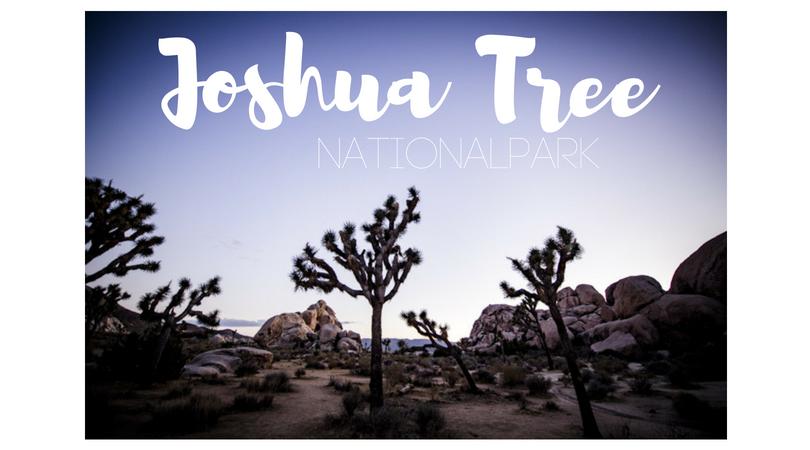 USA – Joshua Tree Nationalpark