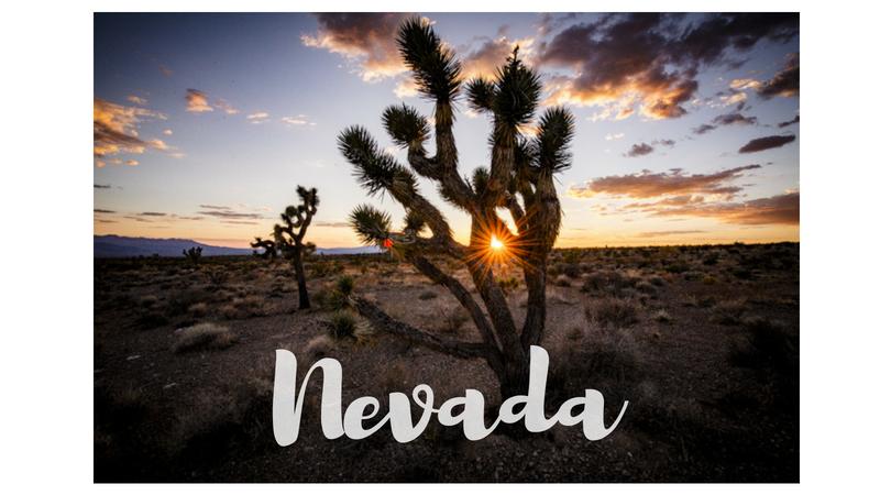 USA – Nevada
