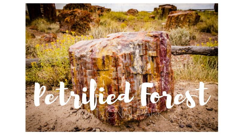 USA – Petrified Forest Nationalpark