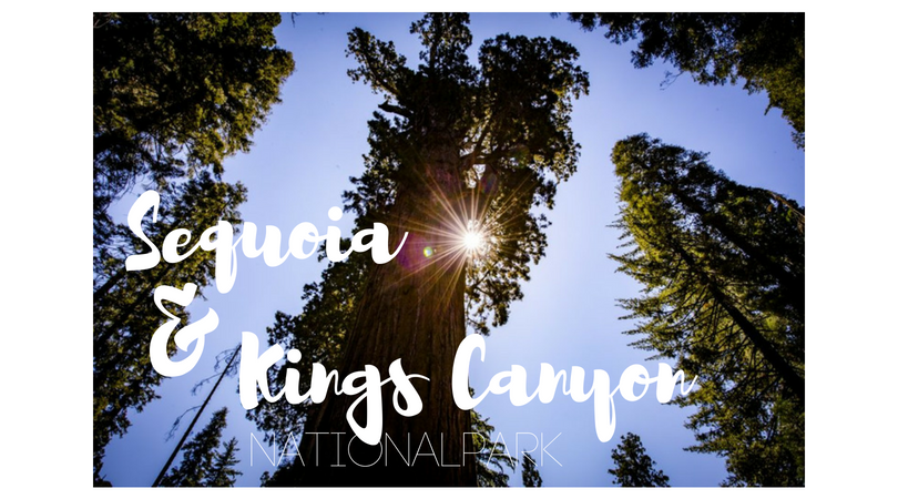 USA – Sequoia Nationalpark & Kings Canyon Nationalpark