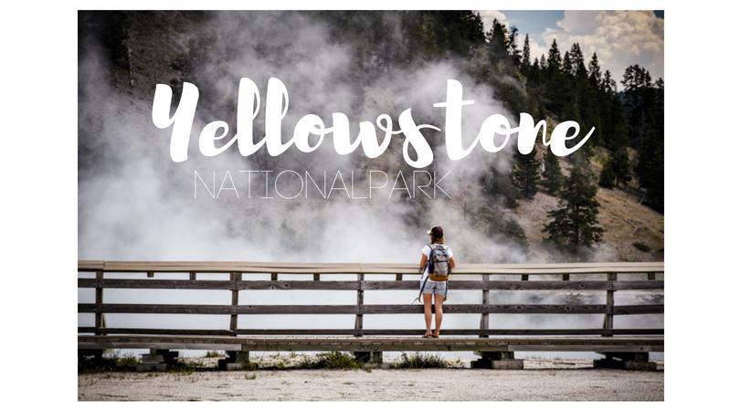 USA – Yellowstone Nationalpark