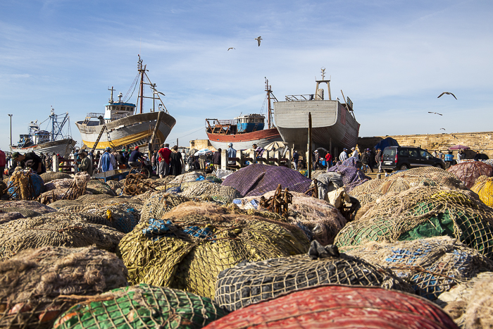 explore Essaouira