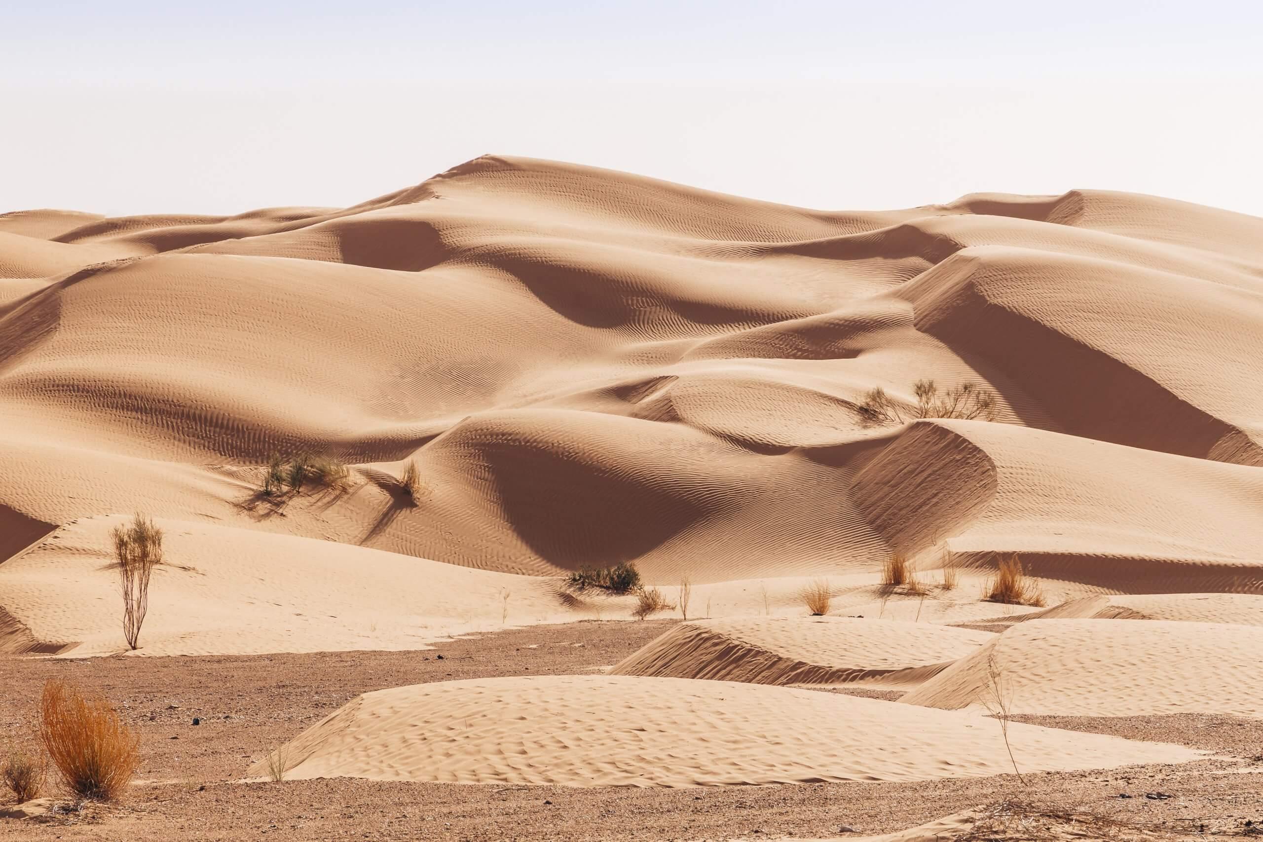 hohe Sanddünen des Grand Erg Oriental
