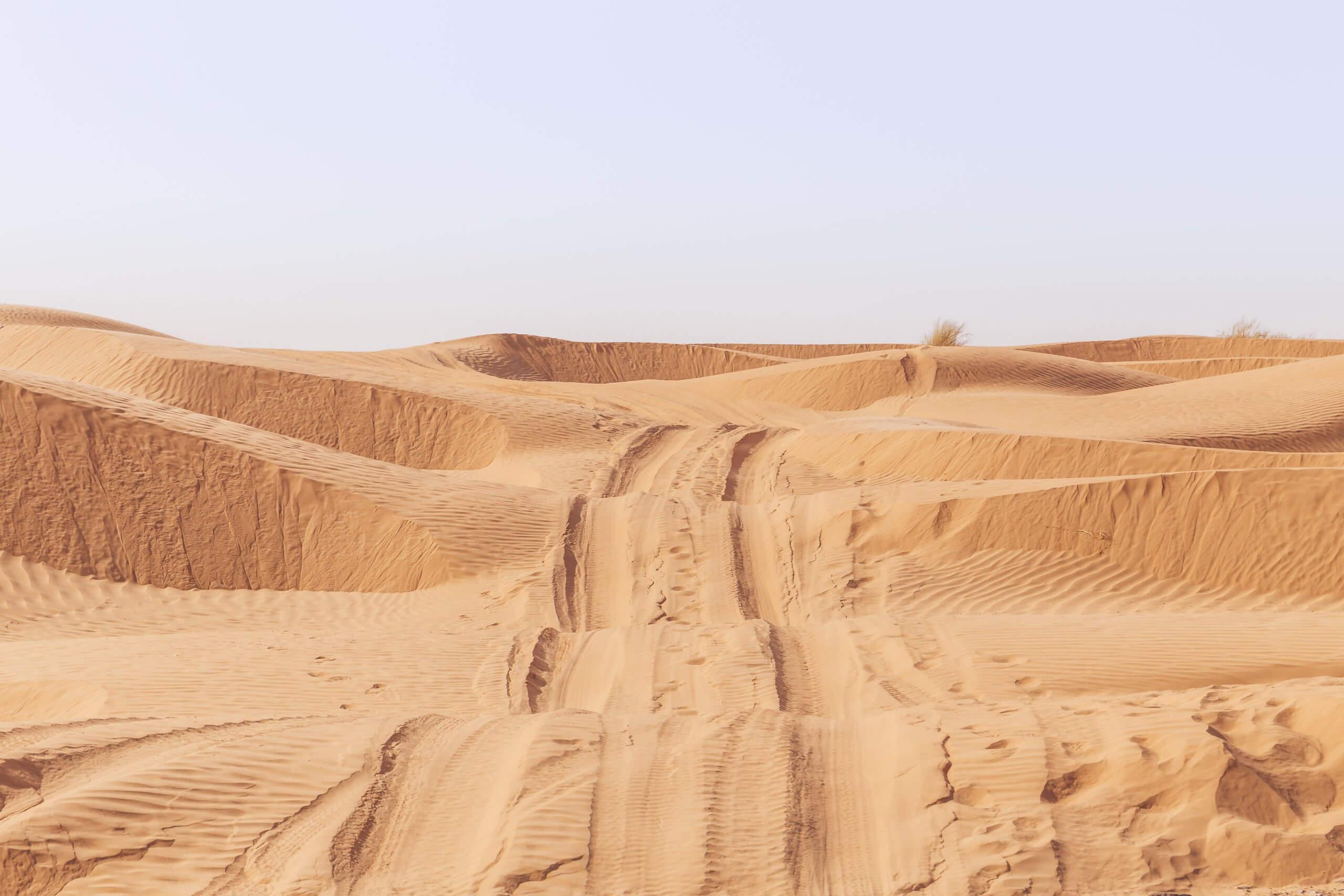 durch die Dünen nach Tembaine