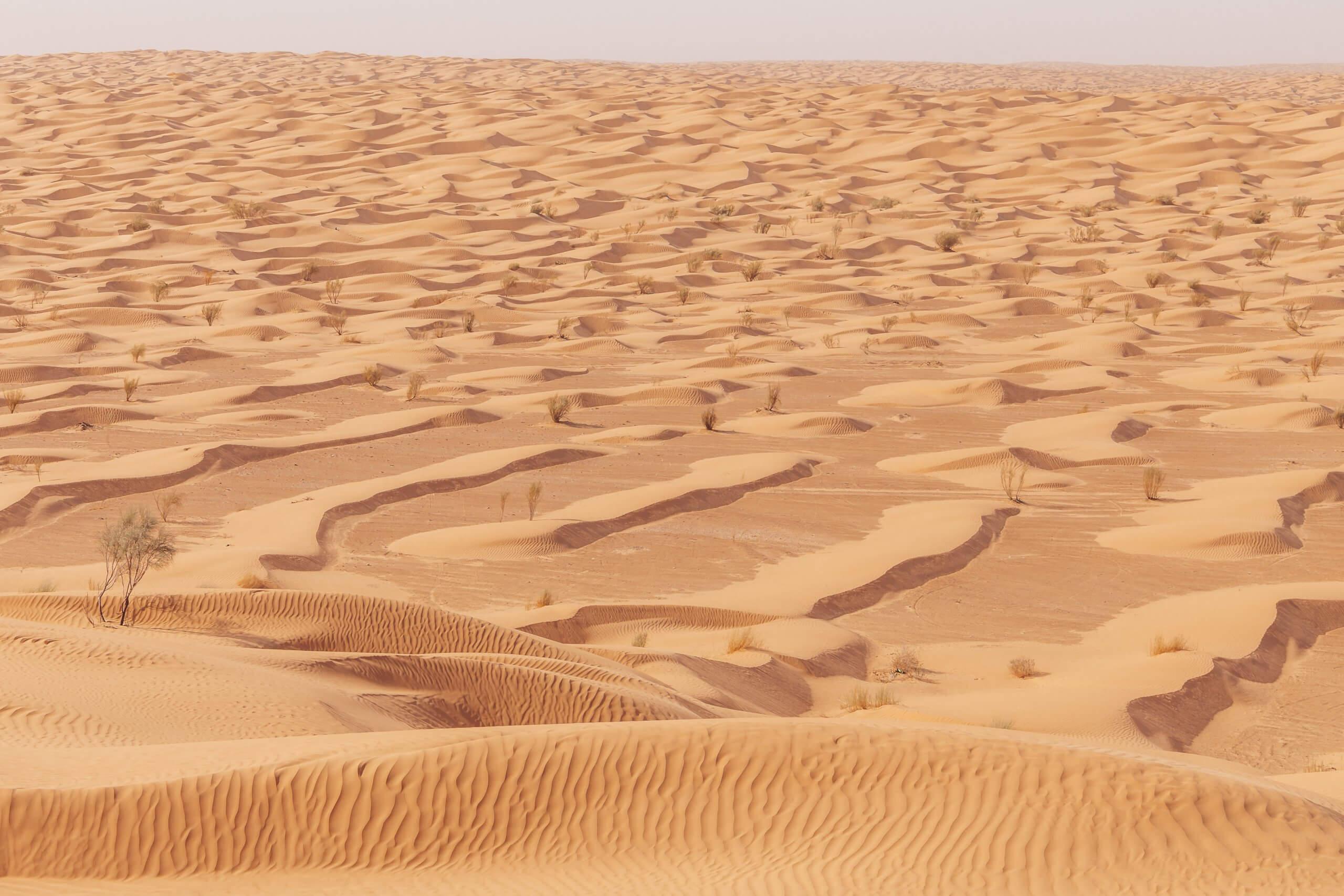 das Sandmeer Tunesien's