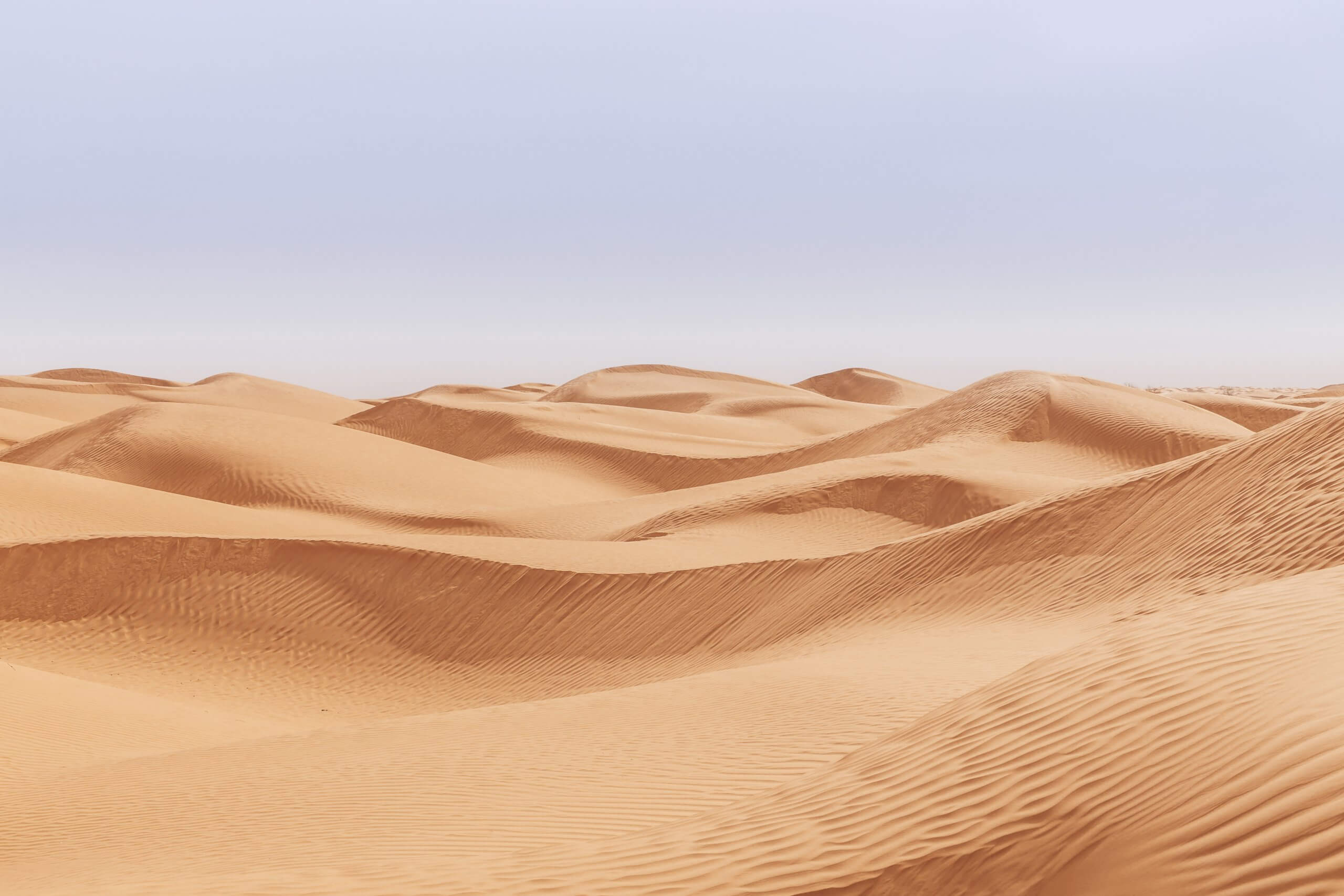 das endlose Sandmeer des Grand Erg Oriental
