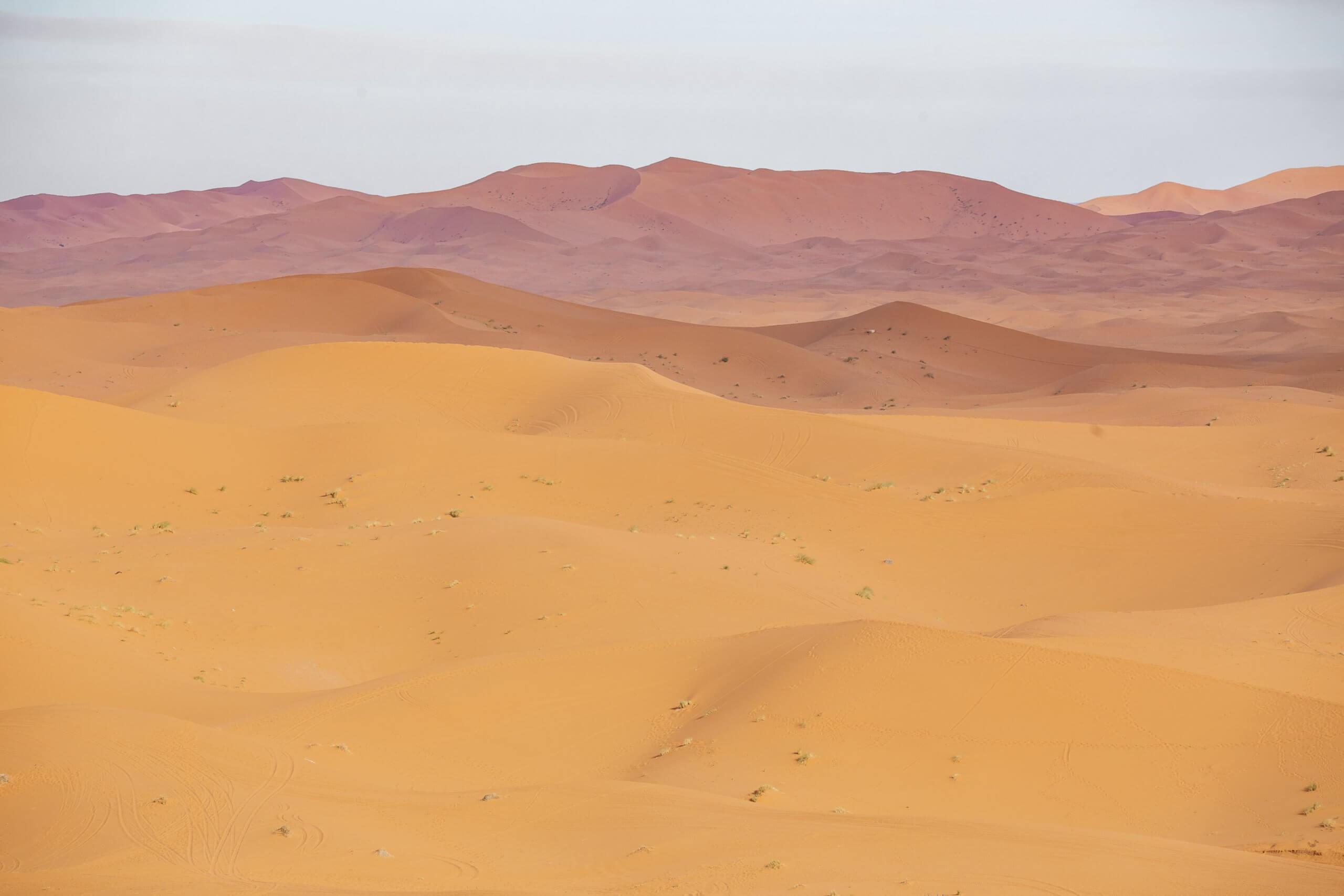 Farbenspiel der Wüste