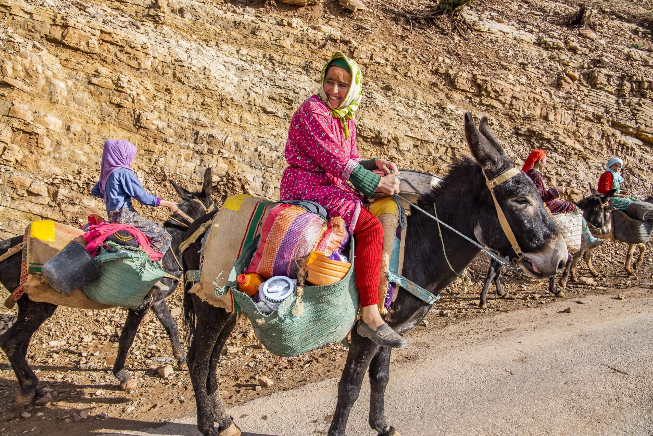 Esel sind beliebte Transportmittel in den Bergen