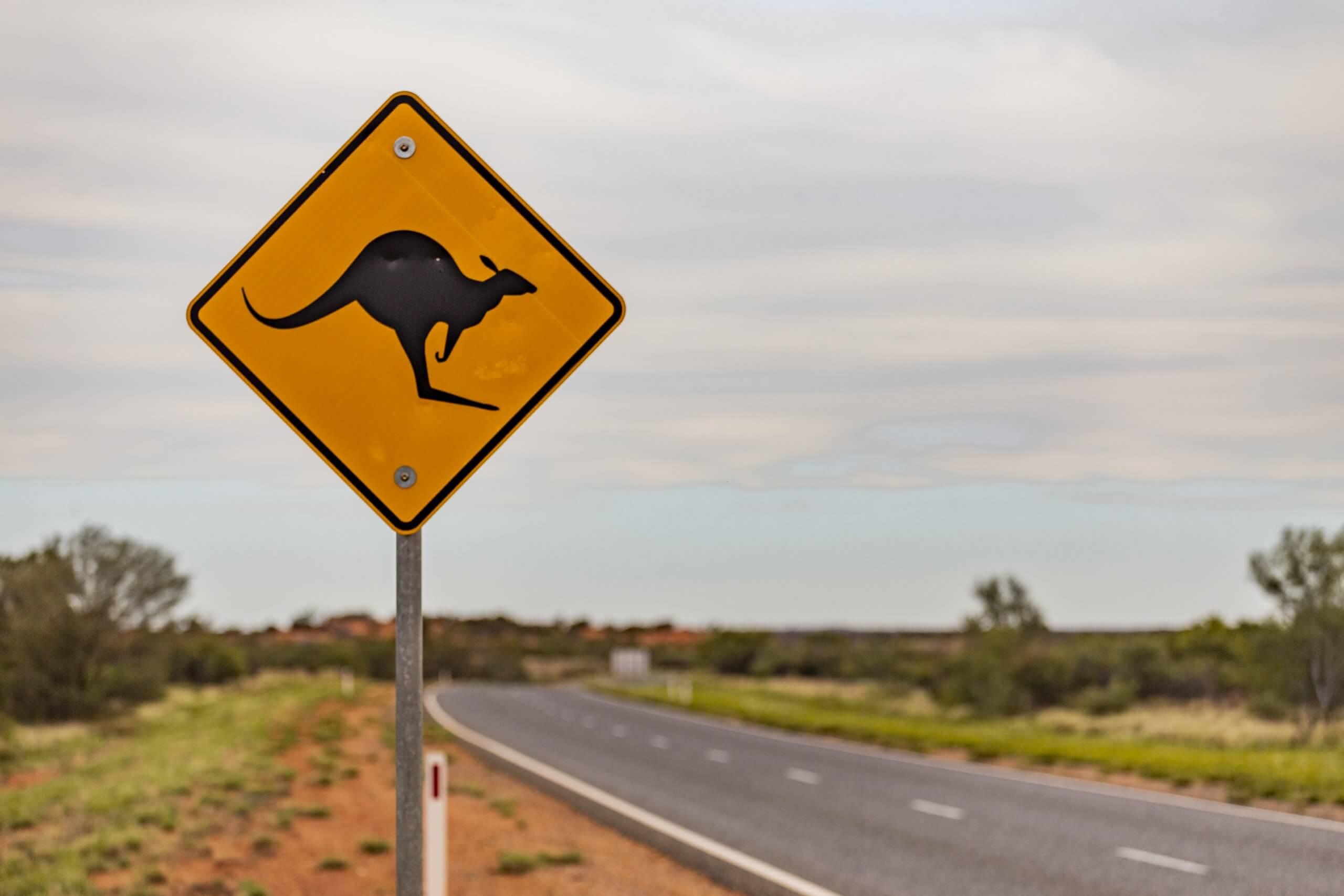 Achtung Känguru!