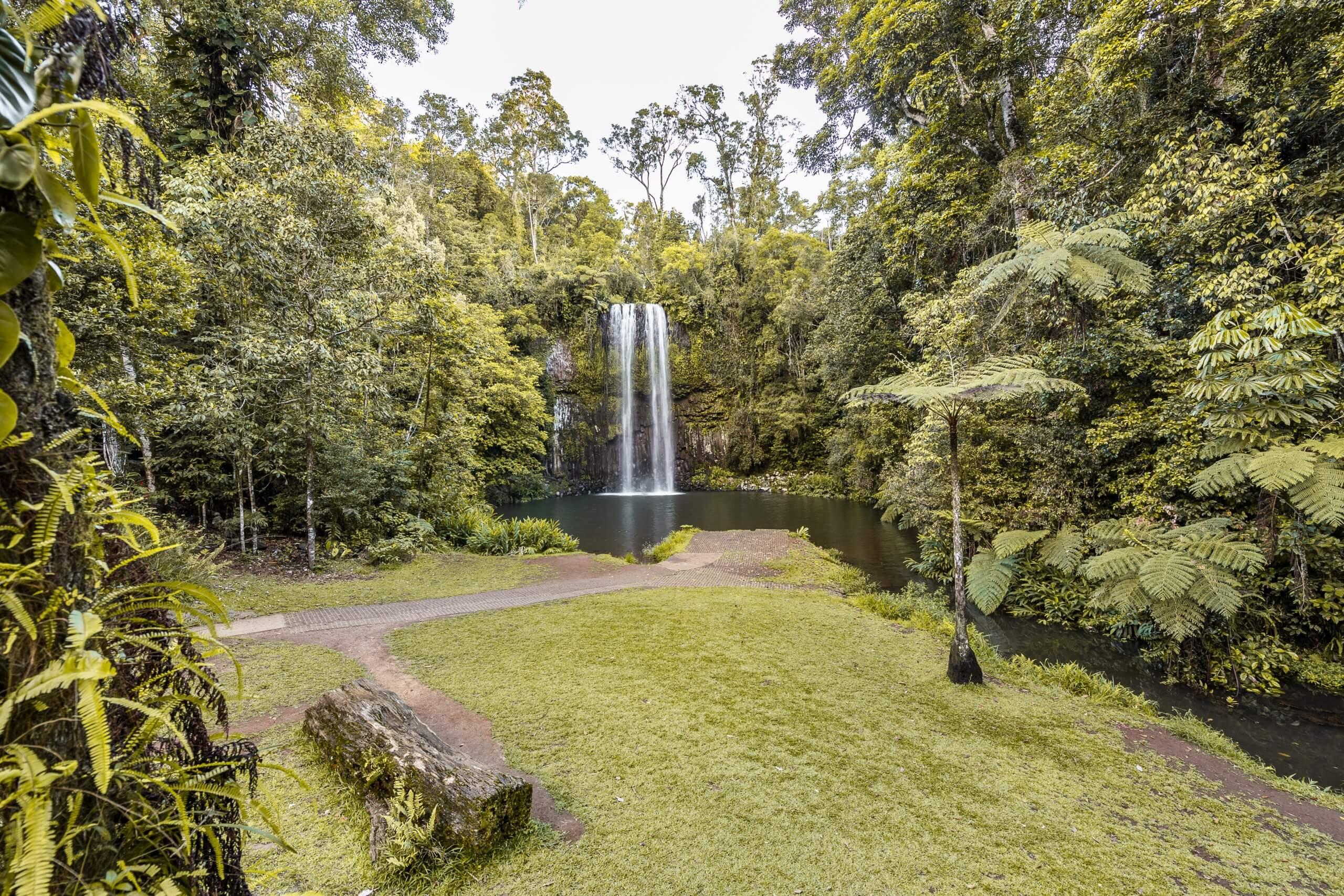 an den wunderschönen Millaa Millaa Falls