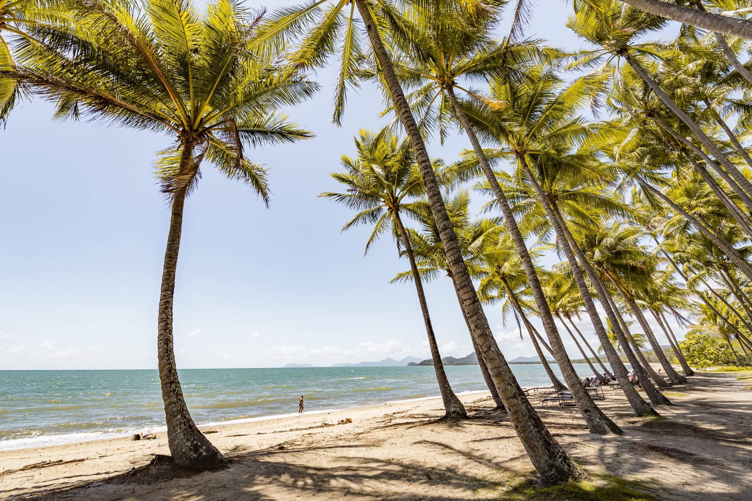 der schöne Palm Cove Beach