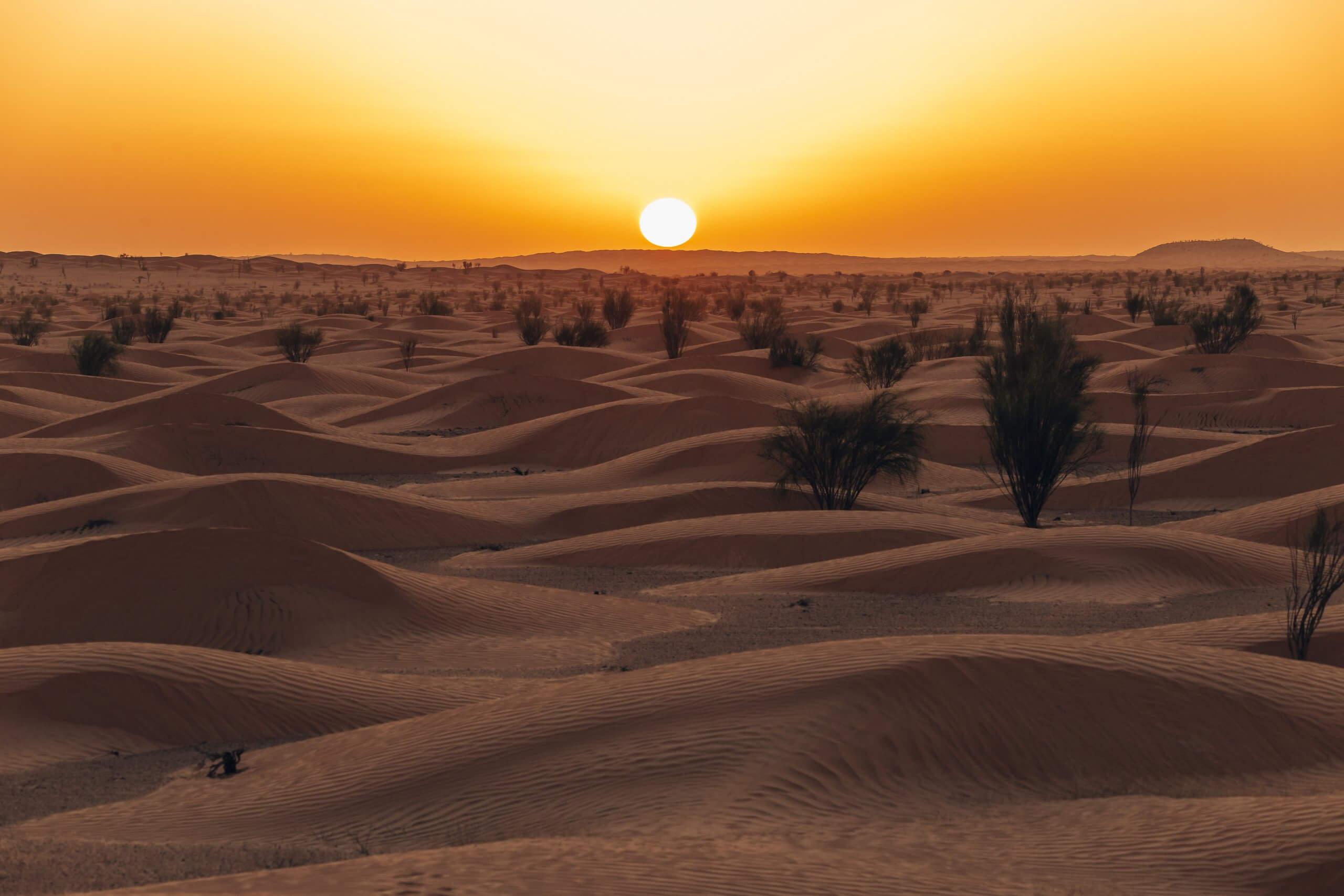 Sonnenuntergang in der Wüste Tunesien's